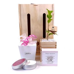 Picture of Pampering Living Tree Gift