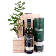 Picture of Living Tree with Glenfiddich