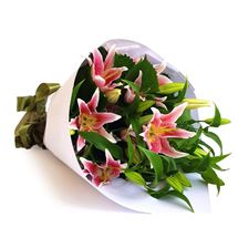Picture of Pink Lilies